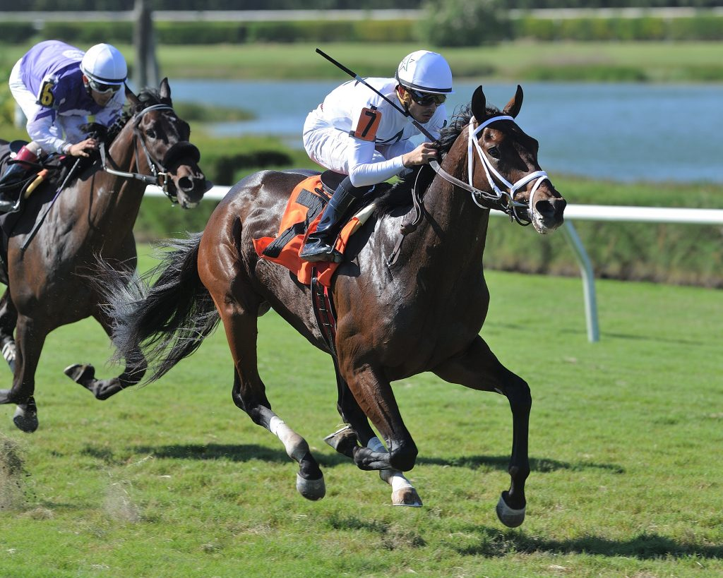 Master Plan winning at Gulfstream Park West